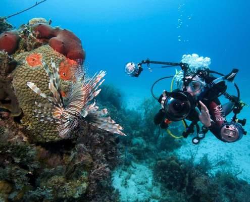 Underwater photography Koh Lanta