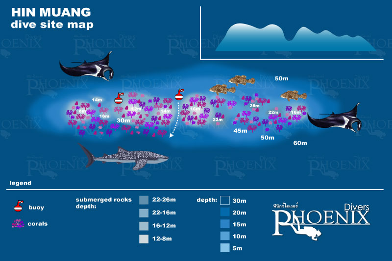 hin muang diving map