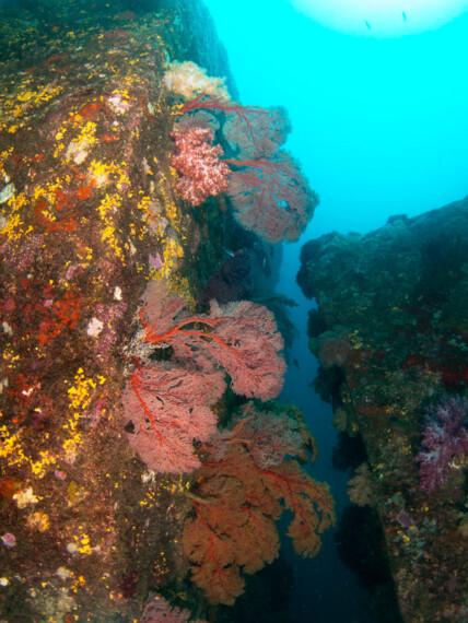 discover scuba diving koh lanta