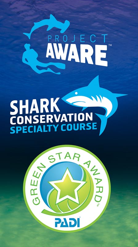 koh lanta shark conservation